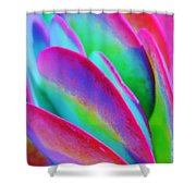 Happy Time Shower Curtain
