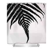 Hapu'u Frond Leaf Silhouette Shower Curtain