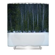 Hard Line Winter Shower Curtain