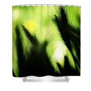 Harmonious Shower Curtain