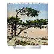 Harmony Of Nature Shower Curtain