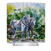 Harnessed Horses Shower Curtain