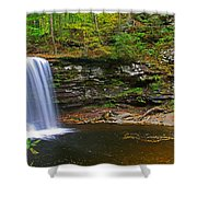 Harrison Wright Falls And Pool Shower Curtain