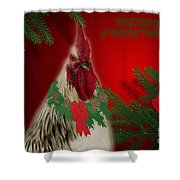 Harry Christmas Wishes Shower Curtain
