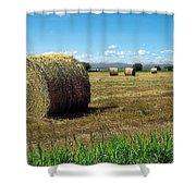 Harvest 3 Shower Curtain