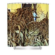 Harvest Art Shower Curtain