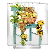 Harvest Fayre Shower Curtain by Amanda Elwell