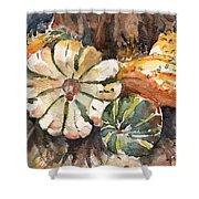 Harvest Gourds Shower Curtain