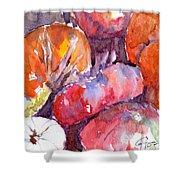 Harvest Pumpkins Shower Curtain