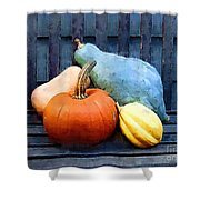 Harvest Rustic Shower Curtain