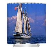 Harvey Gamage Shower Curtain