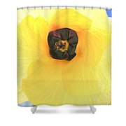 Hau Blossom Shower Curtain