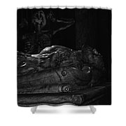 Haunted Crypt Shower Curtain
