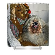 Havanese Dog Shower Curtain
