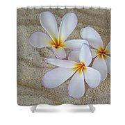 Hawaiian Tropical Plumeria Shower Curtain