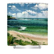 Hawaii Beach Shower Curtain