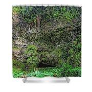 Hawaii Fern Grotto Shower Curtain