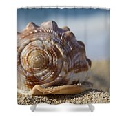 Hawaii Gentle Breeze Shower Curtain by Sharon Mau