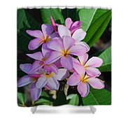 Hawaiian Lei Flower Shower Curtain
