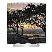 Hawaiian Nights Shower Curtain