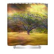Hawaiian Tree Shower Curtain
