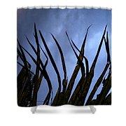 Hawaiiana 11 Shower Curtain