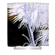 Hawaiiana 17 Shower Curtain