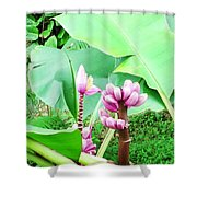 Hawaiiana 22 Shower Curtain