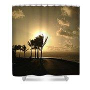 Hawaiian Landscape 8 Shower Curtain