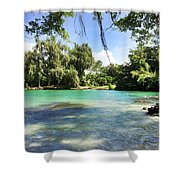 Hawaiian Landscape 4 Shower Curtain