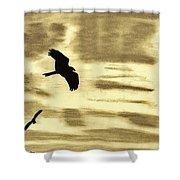 Hawks - At - Sunset Shower Curtain