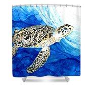 Hawksbill Sea Turtle 2 Shower Curtain