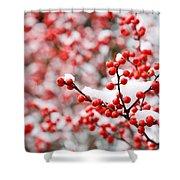 Hawthorn Berries Shower Curtain
