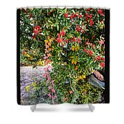 Hawthorn Berry Shower Curtain
