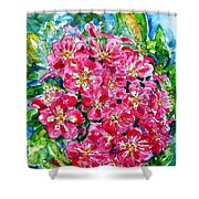 Hawthorn Blossom Shower Curtain