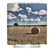 Hay Bales 1 Shower Curtain