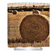 Hay Bales 2 Shower Curtain