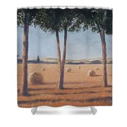 Hay Bales And Pines, Pienza, 2012 Acrylic On Canvas Shower Curtain