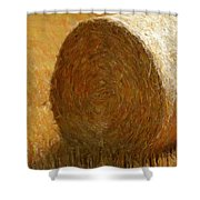 Hay In The Field Shower Curtain