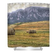 Hay There Shower Curtain by Juli Scalzi