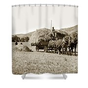 Horse-drawn Hay Wagon Carmel Valley California Circa 1905 Shower Curtain