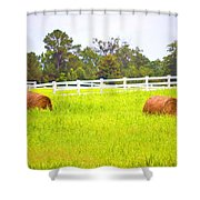 Hayrolls And Fences Shower Curtain