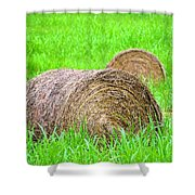 Hayrolls Shower Curtain