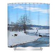 Hays Creek Winter Shower Curtain