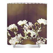Hazy Days Shower Curtain
