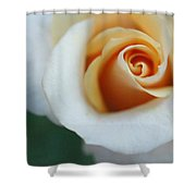 Hazy Rose Shower Curtain