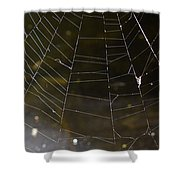 Hazy Web Shower Curtain