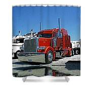 Hdrcatr3080-13 Shower Curtain