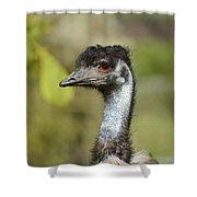 Head Of An Australian Emu Shower Curtain