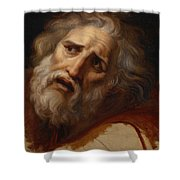 Head Of Laocoon Shower Curtain